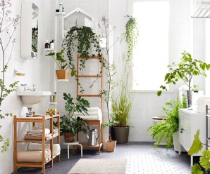 Interior decor with houseplants